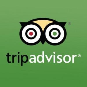 Tripadvisor Insolites Board